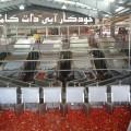 پروژه رب گوجه فرنگی- خودکارآبی دات کام (5)